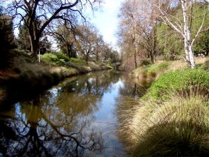 Arboretum view UC Davis